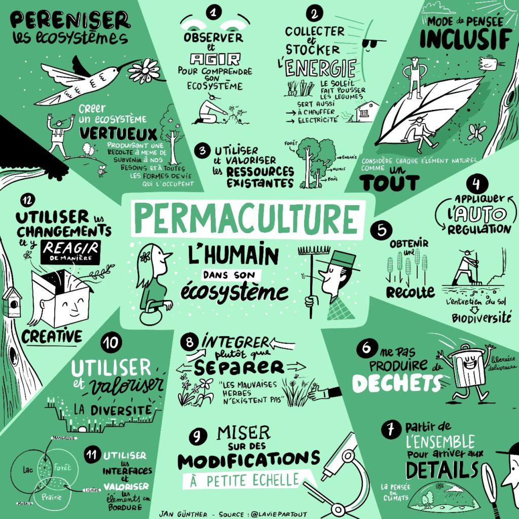 Permaculture humaine et écosystème
